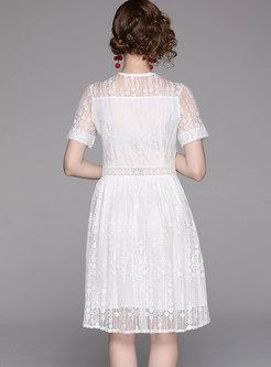 V-Neck Short Sleeve Lace Dress