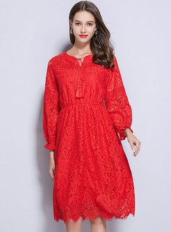Plus Size Lace Elastic Waist Skater Dress