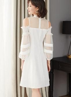 Off Shoulder Perspective Lantern Sleeve Waist Skater Dress