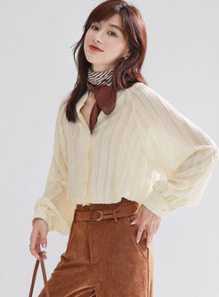 V-neck Lantern Sleeve Striped Blouse