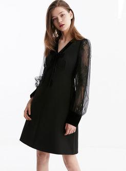 V-neck Mesh Lace Puff Sleeve Skater Dress