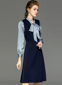 Brief Tie-neck Blouse & Sleeveless A Line Dress