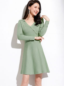 Brief V-neck Long Sleeve A Line Dress