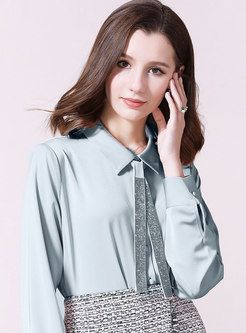 Brief Turn Down Collar Zip-up Blouse