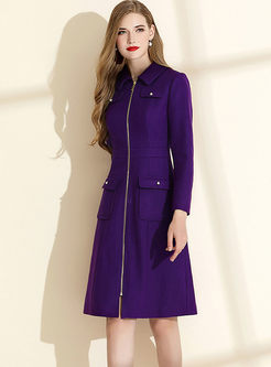 Lapel Long Sleeve A Line Dress