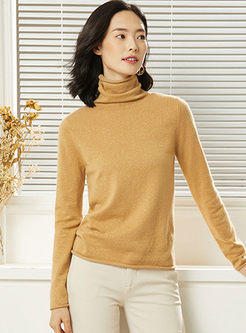 Turtleneck Pullover Slim Knit Sweater