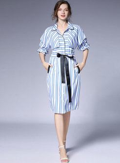 Lapel Raglan Sleeve Striped Shirt Dress
