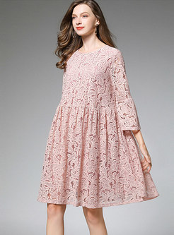 Crew Neck Lace Openwork Loose A Line Dress