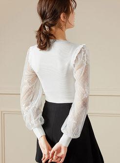 Mesh Lantern Sleeve Pullover Slim Blouse