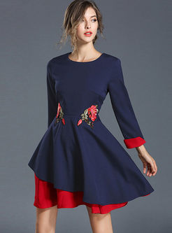 Crew Neck Long Sleeve Embroidered Mini Dress