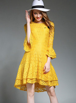 Crew Neck Flare Sleeve A Line Lace Dress