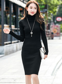 Turtleneck Long Sleeve Bodycon Knitted Dress