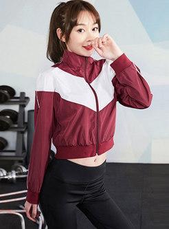 Color-blocked Mock Neck Front Zipper Jacket