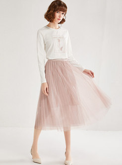 Pink High Waisted Mesh A Line Skirt