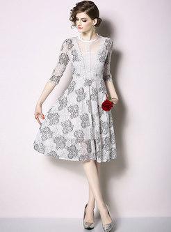 Print Mesh Patchwork Lace Skater Dress
