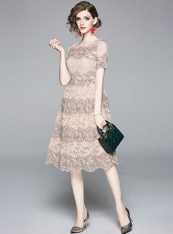 Color Block Lace Short Sleeve Skater Dress