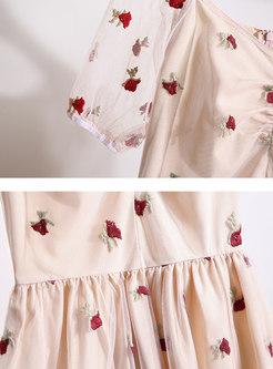 Mesh Embroidered V-neck Sweet Skater Dress