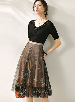 Beaded Knit Top & Mesh Embroidered A-line Skirt