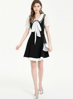 Color Block Bowknot Mini Skater Dress