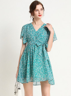 Floral V-neck Tied Mini Skater Dress