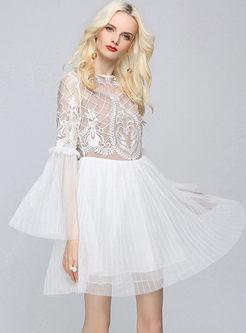 Brief Transparent Flare Sleeve Skater Dress
