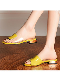 Square Toe Transparent Chunky Heel Summer Slippers