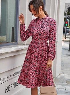 Long Sleeve Print A Line Blouson Dress