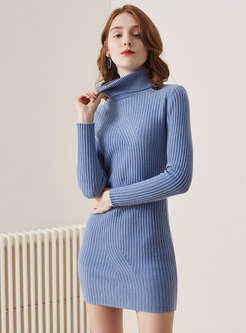 Turtleneck Knitted Mini Bodycon Dress