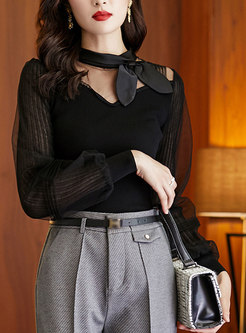 Bowknot Mesh Lantern Sleeve Slim Sweater