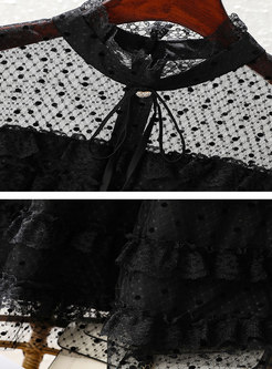 Transparent Mesh Polka Dot Skater Dress