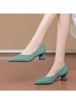 Pointed Toe Low-fronted Chunky Heel Shoes