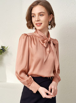 Long Sleeve Pullover Brief Blouse