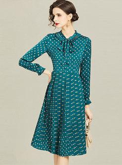 Long Sleeve Polka Dot A Line Pleated Dress