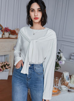 Casual Crew Neck Pullover Solid T-shirt