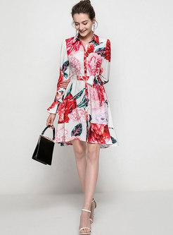 Print Long Sleeve A Line Shirt Dress