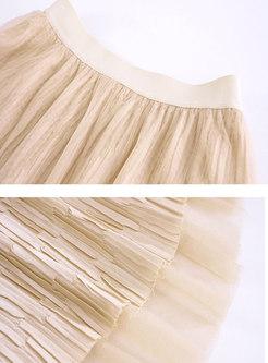 High Waisted A Line Mesh Pleated Skirt