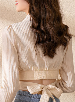 Lapel Long Sleeve Back Bowknot Crop Top