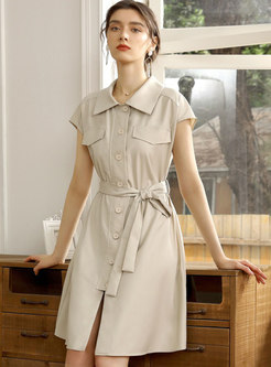 Turn-down Collar Single-breasted A Line Shirt Dress