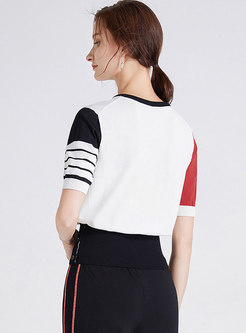 Crew Neck Color-blocked Pullover Knit Top