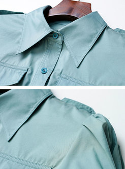Turn-down Collar Puff Sleeve A Line Shirt Dress