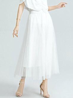 High Waisted A Line Mesh Maxi Skirt