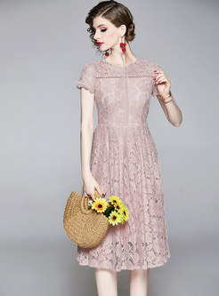 Pink Crew Neck Openwork Lace A Line Dress